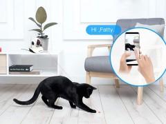 An Interesting Wi-Fi Wireless Pet Camera